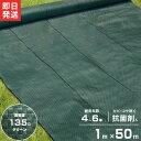 高密度135G 防草シート 1m×50m モスグリーン (抗菌剤+UV剤入り/厚手・高耐久4-6年) [緑 雑草防止 雑草シート 除草…