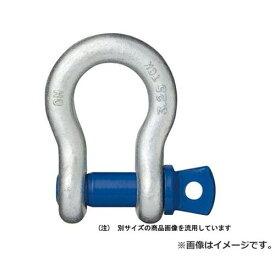 【メール便可】OH 鍛造シャックル 弓型2T BC-20T 4963360523342 [スリング・ジャッキ 補助具][r13][s1-000]