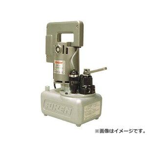 RIKEN 可搬式小型ポンプ SMP3012SK [r22][s9-839]