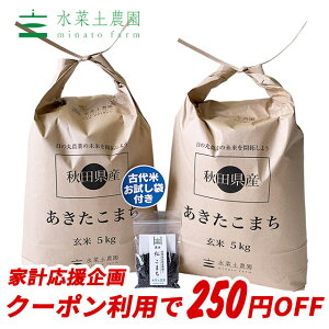 【おまけ付き】秋田県産 農家直送 あきたこまち 玄米10kg(5kg×2袋) 令和元年産 / 古代米お試し袋付き
