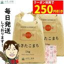 【おまけ付き】【クーポン配布中】秋田県産 農家直送 あきたこまち 精米10kg(5kg×2袋)令和2年産 / 古代米お試し袋…
