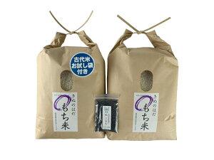 【おまけ付き】秋田県産 農家直送 きぬのはだ もち米10kg(5kg×2袋) 令和元年産 / 古代米お試し袋付き
