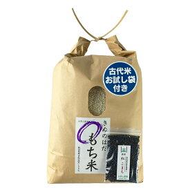 【おまけ付き】秋田県産 農家直送 きぬのはだ もち米5kg 令和2年産 / 古代米お試し袋付き