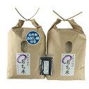 【新米】秋田県産 農家直送 きぬのはだ もち米10kg(5kg×2袋) 令和3年産 / 古代米お試し袋付き