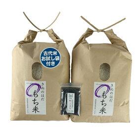 【おまけ付き】秋田県産 農家直送 きぬのはだ もち米10kg(5kg×2袋) 令和2年産 / 古代米お試し袋付き