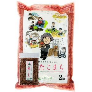 【おまけ付き】あきたこまち 精米2kg 秋田県産 農家直送 令和2年産 / 古代米お試し袋付き