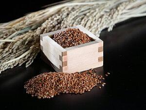 【古代米】秋田県井川町産 赤米『櫻こまち』150g 令和2年産