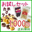 【送料無料】お米のクッキー3種お試しセット
