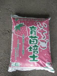 いちご専用の土   いちご育苗培土  イチゴの土大容量40Lサイズです。