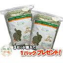 牧草市場 USチモシー3番刈り牧草スーパーソフト1kg(500g×2パック)(ソフトチモシー)