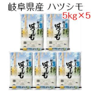 新米 お米 白米 岐阜県産 ハツシモ 25kg(5kg×5) 令和元年産 送料無料(北海道・沖縄は除く)