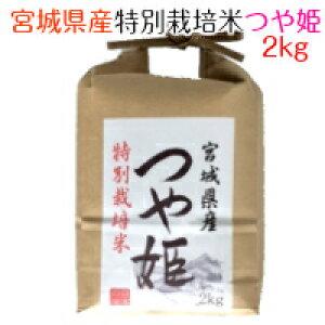 白米 宮城県産 特別栽培米 つや姫 2kg 令和2年産 【精米】【北海道・沖縄は除く】