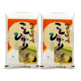 お米 白米 10kg (5kg×2) 富山県産 コシヒカリ 令和元年産 送料無料(北海道・沖縄は除く)