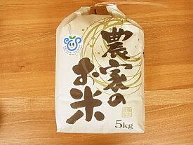 \ ポイント5倍 / 【特別栽培米】コシヒカリ精米5kg兵庫県丹波篠山産・2019年度産お米
