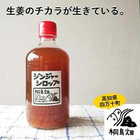 桐島畑のジンジャーシロップ 480g入り 高知県四万十川町産しょうが 生姜シロップ しょうがシロップ