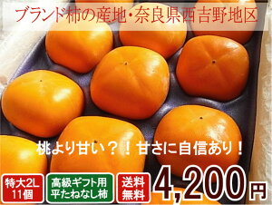 【贈答用】たねなし柿ギフト用高級2L11個入り【楽ギフ_のし宛書】 贈り物 高級果物 フルーツギフト