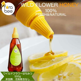 \ エントリーで200ポイントプレゼント / ワイルドフラワーはちみつ 非加熱 花粉除去なし 完熟ハチミツ 百花蜜 蜂蜜 ワイルドフラワーハチミツ チューブ入りハチミツ
