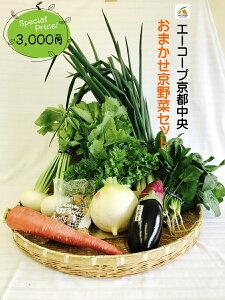 0011 おまかせ京野菜セット3000(お試しセット) 【京都でできた旬のお野菜をお届けいたします。】京都野菜/京野菜/老舗の味/父の日/母の日/誕生日/還暦/プレゼント/グルメ/お土産/お買い
