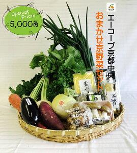 0012 おまかせ京野菜乾物セット5000(お試しセット) 【京都でできた旬のお野菜をお届けいたします。】京都野菜/京野菜/老舗の味/父の日/母の日/誕生日/還暦/プレゼント/グルメ/お土産/お