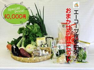 0013 おまかせ京野菜、京都産セット10000(お試しセット) 【京都でできた旬のお野菜をお届けいたします。】京都野菜/京野菜/老舗の味/父の日/母の日/誕生日/還暦/プレゼント/グルメ/お土