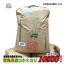 令和元年産 福島県産 コシヒカリ 玄米 30kg お米 精米無料 送料無料【smtb-td】【saitama】【HLS_DU】【マラソン20…