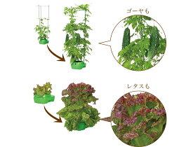 【送料無料】私の畑2個セット 家庭菜園 (水耕栽培) 肥料 土 (エクセルソイル培地) 季節の種のセット