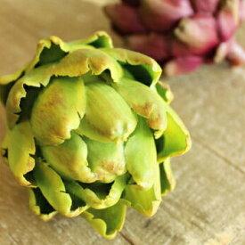 アーティチョーク 造花 野菜 フルーツ インテリア 雑貨 ディスプレイ用食品サンプル