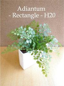 アジアンタム Rectangle 長方形 20cm 造花 CT触媒 造花 観葉植物 ミニ インテリア