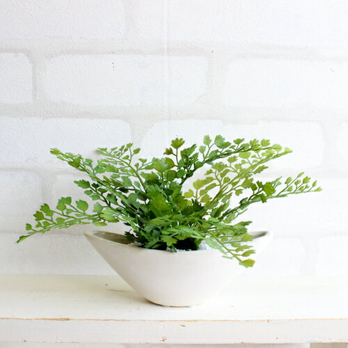 アジアンタム 小舟型 H12 造花 観葉植物 インテリア CT触媒 ミニ 造花