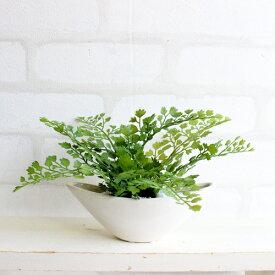 アジアンタム 小舟型 H12 造花 観葉植物 インテリア CT触媒 フェイクグリーン