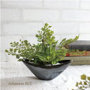アジアンタム 小舟型 H12 銀黒鉢 造花 インテリア CT触媒 観葉植物 ミニ フェイクグリーン