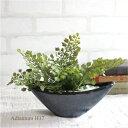 アジアンタム 舟型 H17 銀黒鉢 観葉植物 造花 インテリア CT触媒 ミニ フェイクグリーン