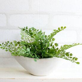 アジアンタム 舟型 17cm 人工観葉植物 造花 インテリア ミニ CT触媒 フェイクグリーン