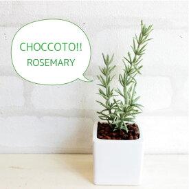 ちょこっとおいてこっそり消臭!■消臭 ローズマリーポット♪ 造花 観葉植物 光触媒 CT触媒 インテリア フェイクグリーン