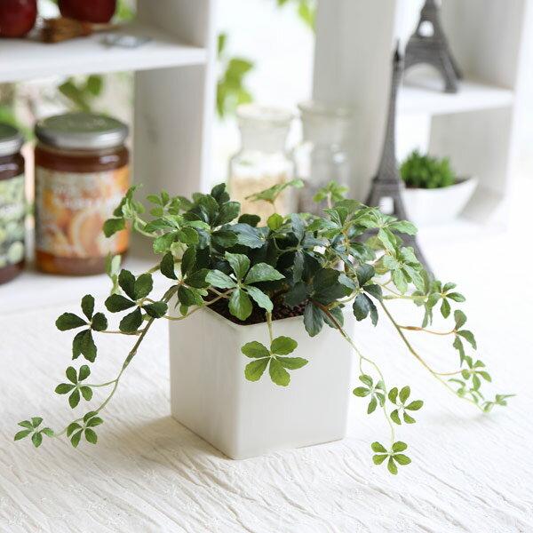 観葉植物 L.シサスアイビー シュガーバイン 造花 インテリア フェイクグリーン 消臭 光触媒 CT触媒