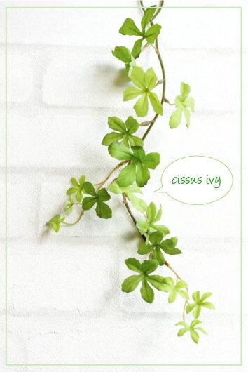 S.ミニシサスアイビーバイン スプリンググリーン(シュガーパイン)41964 造花 フェイクグリーン 消臭 光触媒 CT触媒