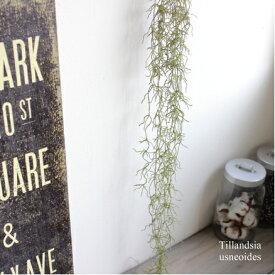 スパニッシュモス チランジア ウスネオイデス ティランジア ティランドシア 人工観葉植物 フェイクグリーン 造花 インテリア CT触媒