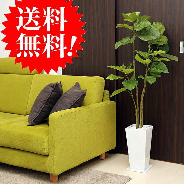 ウンベラータ130cm 白スクエア皿付 k-12 造花 観葉植物 インテリア フェイクグリーン 大型 光触媒 CT触媒 送料無料