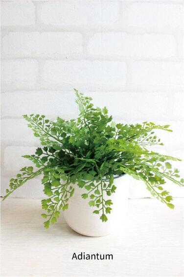 アジアンタムポット H20 U鉢 造花 観葉植物 インテリア ミニ