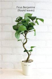 ミニ観葉植物 丸葉ベンジャミン H40 造花 フェイクグリーン 観葉植物 CT触媒