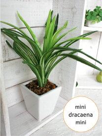 ミニミニドラセナ 22cm 白鉢 人工観葉植物 造花 インテリア 観葉植物 ミニ 光触媒 CT触媒 フェイクグリーン