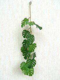 消臭スプレー ミニスプリットフィロー(モンステラ) 観葉植物 光触媒 CT触媒 消臭 フェイクグリーン 40867
