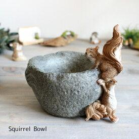 リス ボウル Squirrel 【雑貨 ガーデン雑貨 インテリア】