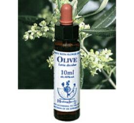 【ネコポスで送料無料】Healing Herbs No.15 オリーブエキス 10ml[HealingHerbs(ヒーリングハーブス) フラワーエッセンスヒーリングハーブス]