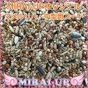 【MIRAI-UPオリジナル】MIRAIブレンド マメルリハ・中型インコ用2.5kg【当日発送可】