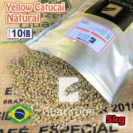 スペシャルティコーヒー 生豆 5kg ブラジル グアリロバ農園 イエローカトゥカイ ナチュラル ( Brazil Guariroba Yellow Catucai Natural 5kg ) 高品質コーヒー 生豆 高級珈琲 未焙煎 送料無料