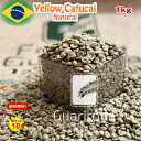 スペシャルティコーヒー 生豆 1kg ブラジル グアリロバ農園 イエローカトゥカイ ナチュラル ( Brazil Guariroba Yellow Catucai Natural 1kg ) 高品質コーヒー 生豆 高級珈琲 未焙煎 オープン記念キャンペーン 送料無料 ポイント10倍