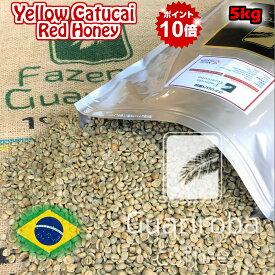 スペシャルティコーヒー 生豆 5kg ブラジル グアリロバ農園 イエローカトゥカイ レッドハニー ( Brazil Guariroba Yellow Catucai Red Honey 5kg ) 高品質コーヒー 生豆 高級珈琲 未焙煎 送料無料