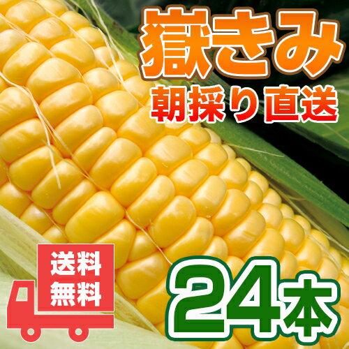 送料無料 嶽きみ青森県が誇るプレミアムとうもろこし24本セット!まるで果物のような甘さ/トウモロコシ/コーン[同梱不可]
