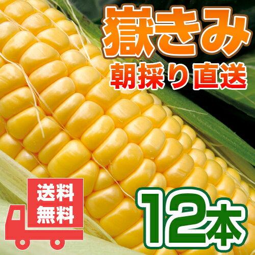 送料無料 嶽きみ 青森県が誇るプレミアムとうもろこし12本セット!まるで果物のような甘さ/トウモロコシ/コーン[同梱不可]